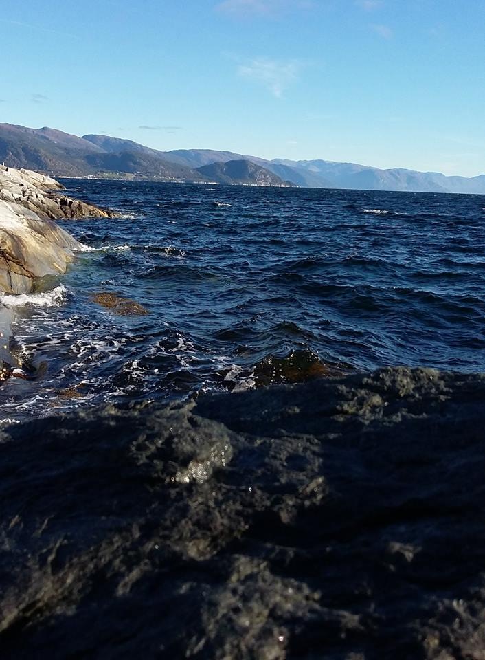 Sjøen fjord og fjell